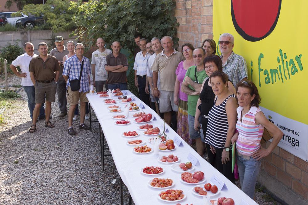 L'Ajuntament de Tàrrega treu a concurs l'adjudicació de parcel·les per a fer ús dels horts socials i familiars