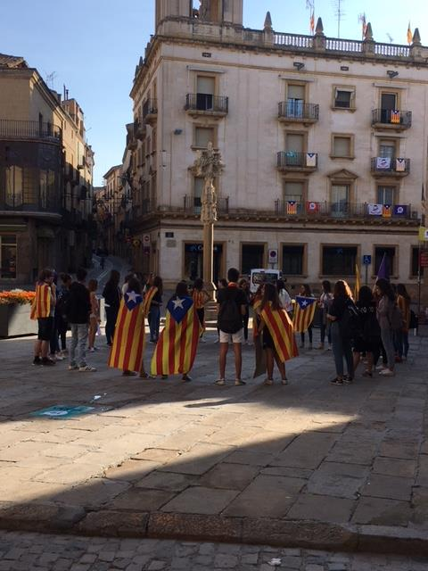 Estudiants de l'Urgell en vaga avui en suport de l'1-O