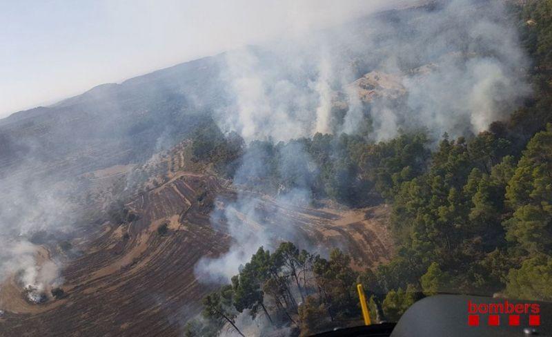 Extingit l'incendi de l'Urgell que ha afectat 8,6 hectàrees, majoritàriament agrícoles