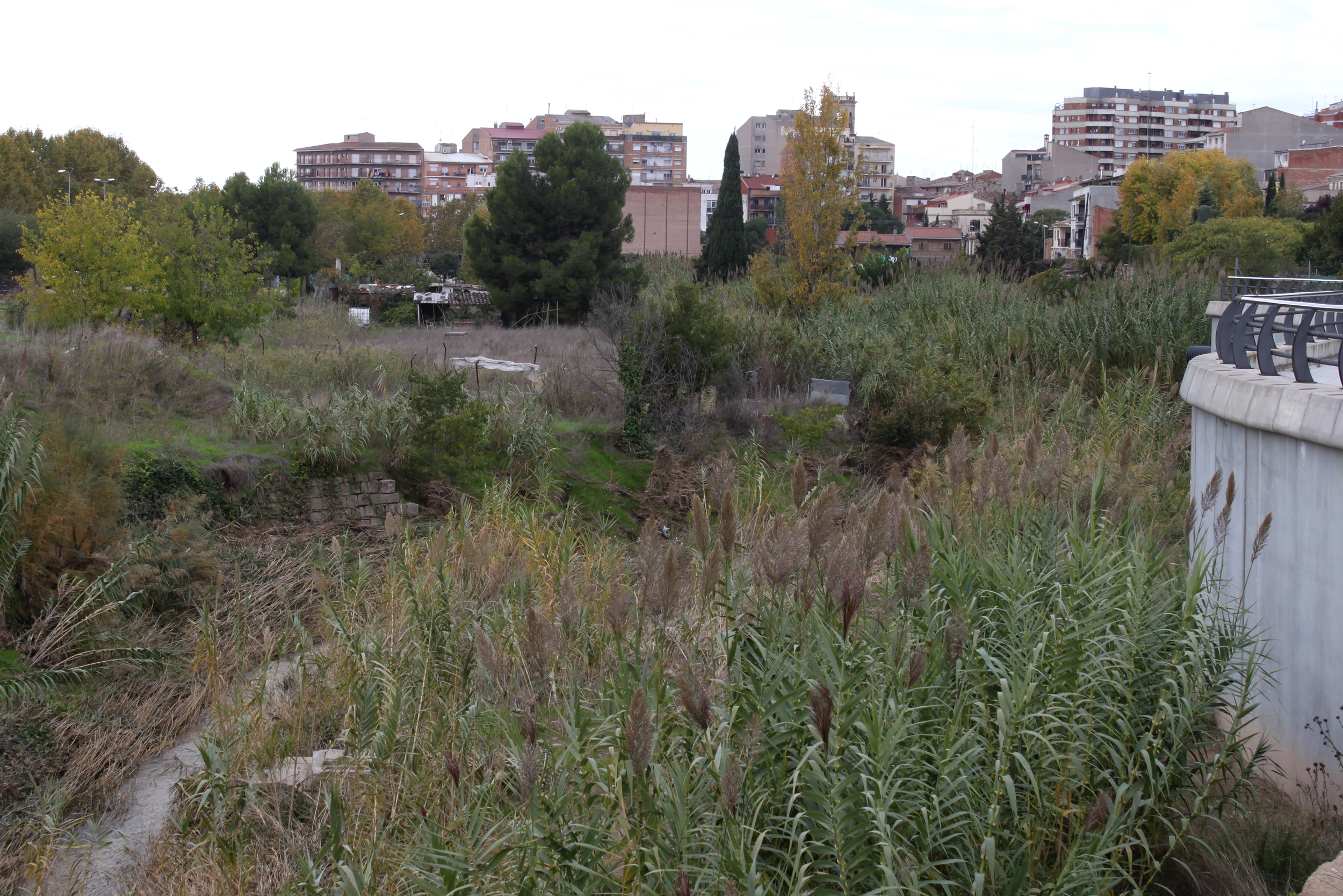 L'Ajuntament de Tàrrega finalitza l'expropiació d'horts vora el riu Ondara i licitarà les obres per convertir l'espai en zona de passeig