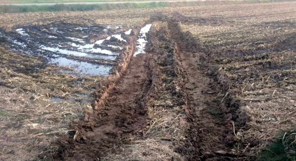 Pla general d'un camp on s'hauria de sembrar cereal a Ivars d'Urgell afectat per l'excés de pluges, el novembre de 2018. (Horitzontal)