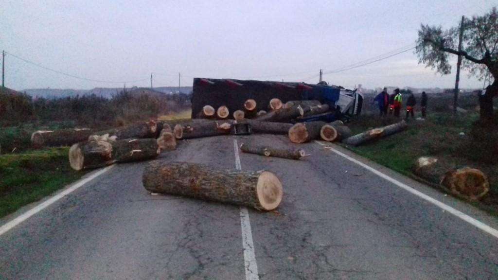 Els troncs del camió bolcat, escampats per la C-14 a Tàrrega. Imatge del 13 de desembre de 2018. (Horitzontal)