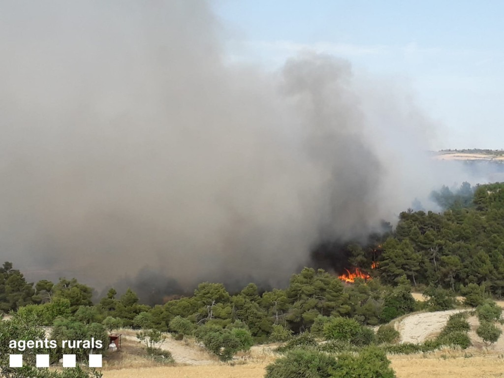 Pla general de l'incendi que crema vegetació agrícola i forestal entre Nalec i Rocafort de Vallbona, a la comarca de l'Urgell, el 24 de juny del 2019 (Horitzontal)