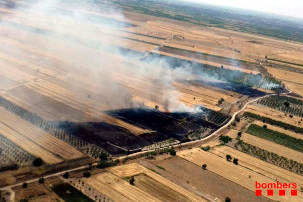 Pla general dels camps de vegetació agrícola afectats per l'incendi de Belianes (Urgell), el 6 de juliol del 2019 (horitzontal)