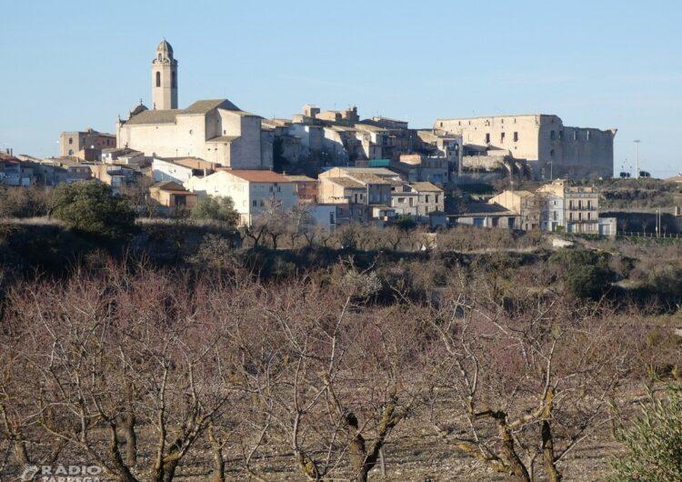 Un total de 6 pobles de l'Urgell sense telèfon ni internet per un nou robatori de cable