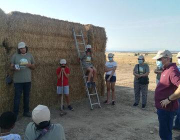 L'Associació Limonium Natura habilita un espai a la Figuerosa per afavorir la cria campestre de l'esparver cendrós