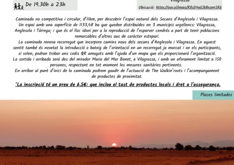 3a 'Caminada als Secans d'Anglesola-Vilagrassa' el proper dissabte 21 d'agost